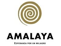 Bodega Amalaya